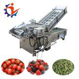 泡洗濯機の野菜およびフルーツの洗浄加工ライン