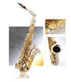Saxophone Alto de gros, l'or Pocked corps touche plaqué or