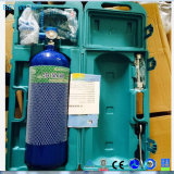 4L鋼鉄シリンダー酸素供給の酸素ボンベは病院のためにセットした