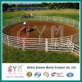 Скотный двор лошади стробирует строб загородки/загородку скотин поголовья