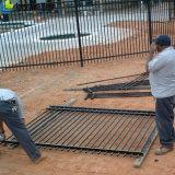 панели загородки ковки чугуна длиннего Du Pont порошка 8ft Coated