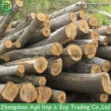 Tipo horizontal cortadora de madera del tambor para las ramificaciones de árbol