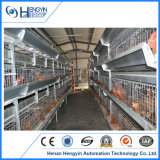 um tipo gaiola da camada da galinha com sistema de alimentação automático