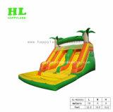 夏季休暇の水プールが付いている膨脹可能なスライド