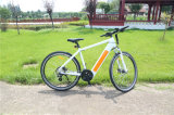 700cc Bateria Oculta Mountain Ebike Bicycle Bicicleta elétrica