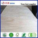 Le peuplier/pin Contreplaqué de noyau commercial //Bintangor Okoume contreplaqué contreplaqué pour meubles