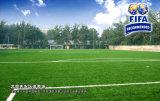 Césped artificial del balompié del fútbol (MDS60)