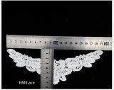 Il testo fisso del merletto della guipure del cotone, il fiore africano di Trimchest del merletto del cavo, accoppiamento del merletto del cotone comercia X055 all'ingrosso
