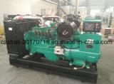 80kw 4 Carrera B5.9g-G100 el Gas Natural/Generador Diesel con motor Cummins