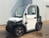 Neues Electric Mini Car mit Hinterem-Opened Iron Door (SP-EV-12)