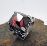 Zircon bedt de Roestvrije Juwelen van de Toebehoren van de Manier van de Tendens van de Ringen van Mensen in