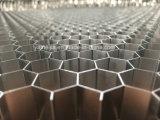 Âmes en nid d'abeilles en aluminium ignifuges à haute densité pour des remplissages de porte