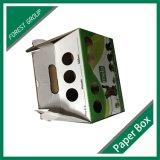 Caja Pet Carrier Shanghai fábrica personalizada