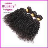 De in het groot Maleise Kroezige Krul Afro naait in het Weefsel van het Haar