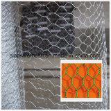Vendre toutes sortes de compensation de fil hexagonale
