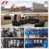 Prix raisonnable, Granulateur d'engrais à base de sulfate d'ammonium Granulateur en Chine