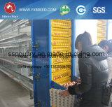 養鶏場のための農業機械Hのタイプ熱い電流を通された鋼鉄ケージ