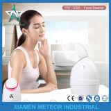 Su uso en casa belleza instrumento portátil Mist pulverizador vaporizador Facial DE ANIONES