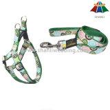 El nylon poliéster/ mazo de cables de alimentación de mascotas, mascotas y productos de plomo, perro Correa y collar de perro