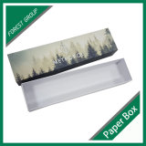 L'abitudine ha stampato il contenitore di regalo della trasparenza del cartone (Fp 8039111)