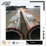 acier élevé galvanisé Pôle de mât d'IMMERSION chaude de 20-30m
