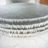Âme en nid d'abeilles en aluminium pour les panneaux de train/camion (HR284)