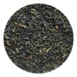 EUおよびNopの証明書が付いている中国の生物緑の茶葉