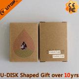 Presentes Premium com caixa de papel personalizado USB Drive (YT-6662)