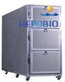 Refrigerador frio da morgue dos cadáveres dos corpos do aço inoxidável três