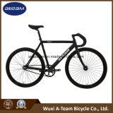 [700ك] ثابت ترس درّاجة/دورة ([رسنغ2])