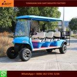 熱い販売8の乗客電気ハンチングゴルフカート(後部バックフリップのシート)