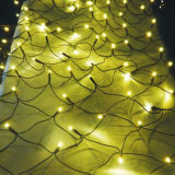 Migliori indicatori luminosi di natale di illuminazione esterna decorativa netta dell'indicatore luminoso LED