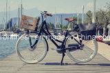 غلّة كرم سيدة [ستل] [200ويث250ويث350و] درّاجة كهربائيّة/كهربائيّة [بيك/] درّاجة/[بدلك/] درّاجة [و] أماميّ سلّة [س], [إن15194]