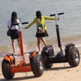 """Bicicleta elétrica de duas rodas fora do auto do carro elétrico da estrada que balança o """"trotinette"""" elétrico"""