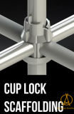 미국 시장에 좋은 품질을%s 컵 자물쇠 비계