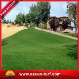 연약한 정원사 노릇을 하는 훈장 인공적인 잔디 합성 물질 뗏장