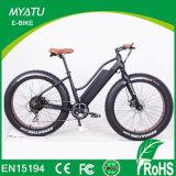 500W 1000W 26インチElectric Moped車輪によって隠される電池の脂肪質のタイヤのスポーツ都市女性