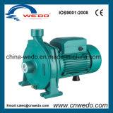 Cpm-146 de centrifugaalPomp van het Water met Uitstekende kwaliteit (0.55KW/0.75HP)