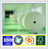 C2s/Papel Arte Papel Bond/Couche papel fabricado en China
