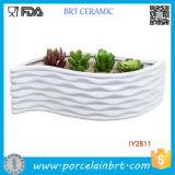Contenitore di ceramica bianco moderno del fiore di disegno di figura di foglio
