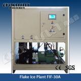 Máquina de hielo aguanieve para el Procesamiento de Pescado y Carne