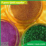 Bulk all'ingrosso Glitter Powder per Christmas Gift