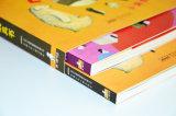Impression de livres pour enfants Design spécial Fancy Board Book Carton Livre pour enfants