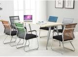 اعملاليّ أثاث لازم قمار كرسي تثبيت [أفّيس كمبوتر] مديرة كرسي تثبيت