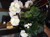 Migliori fiori artificiali di vendita del geranio decorativo
