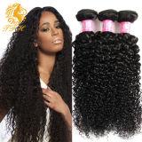 7A-Grade заводская цена новоприбывших Xuchang профессиональный производитель Virgin Реми 100% бразильского вьющихся волос кривой