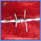 Galvanisierter zwei Strang-Stacheldraht