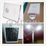 Réverbère solaire Integrated de DEL, réverbère, lumière de route, 12W