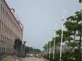 Luz híbrida solar e do vento da potência do diodo emissor de luz de rua (híbrido do painel solar e da turbina de vento)