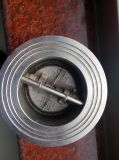 Задерживающий клапан Ss304/CF8 (H77X (h) - 10/16)